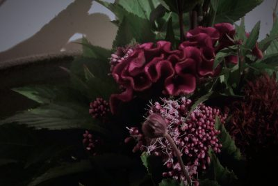 けいとうの花,秋明菊,藤袴