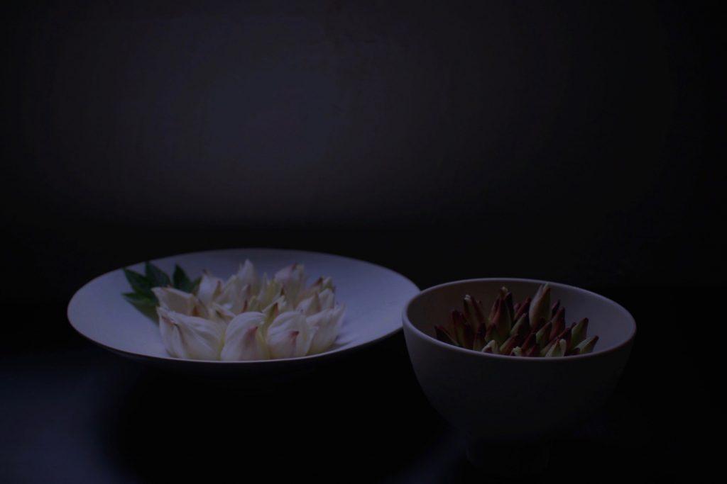 竜舌蘭,ryuzetsuran