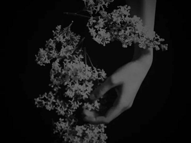 hana,花デザイン,flower design,design ライラック