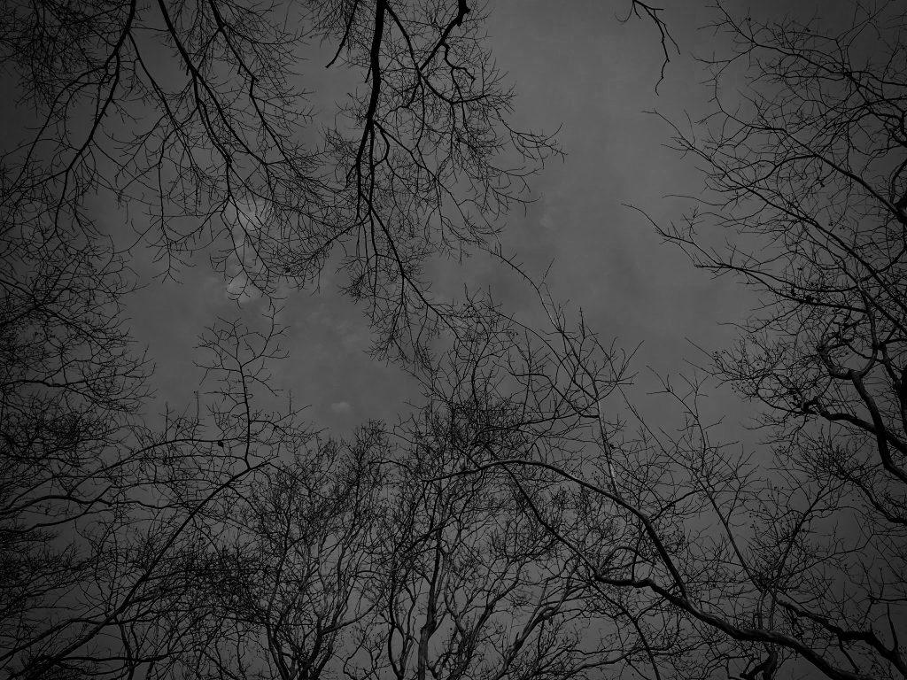 季冬,冬の空