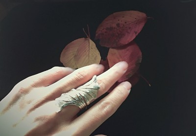 autumn,photo,hand