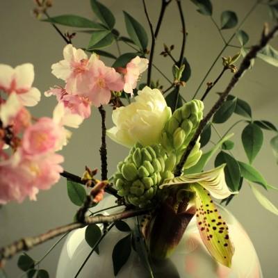 IMG_6892_japon an