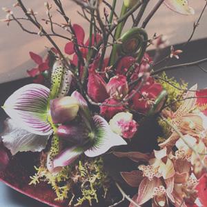 japan design,fleurs