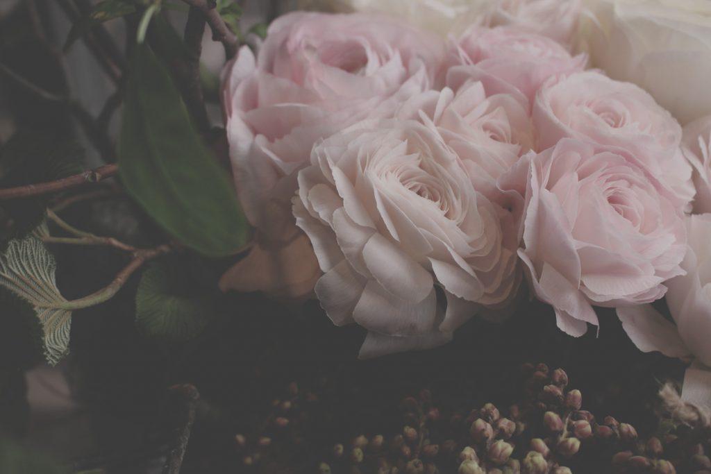flower,Ranunculus