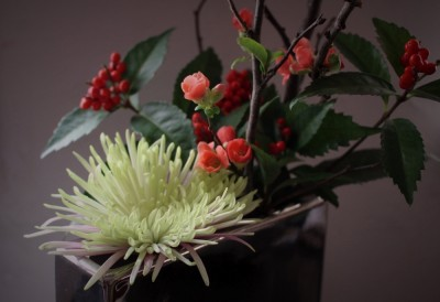 design,flower,display