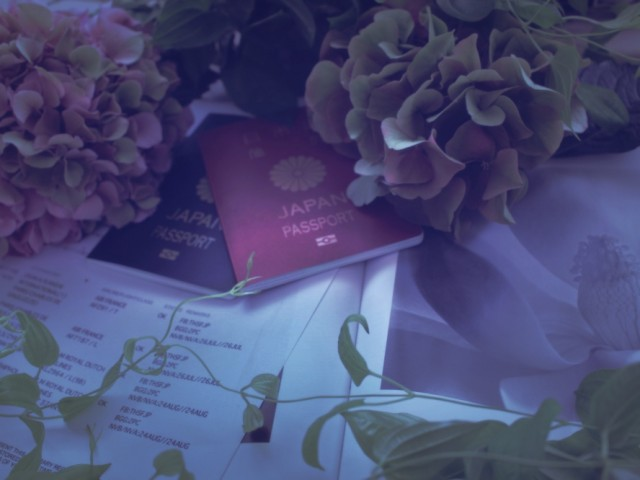 Bruxelles,flower,passport、紫陽花